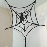 Spinne Wand